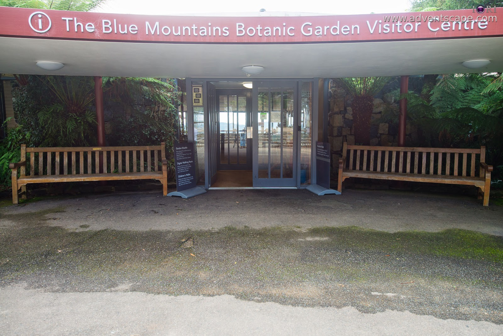 adventscape, Australia, Blue Mountain, Botanical Gardens, iori, Mount Tomah, New South Wales, NSW, Philip Avellana, tourism, travel, fall, autumn, visitor centre, information centre