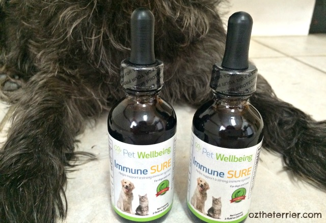 Immune SURE helps pets say #BooTheFlu with anti-microbial properties