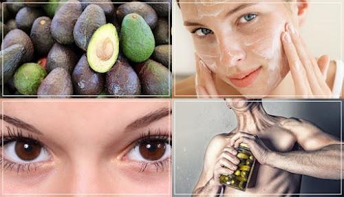Benefícios do Abacate, o Fruto Mágico