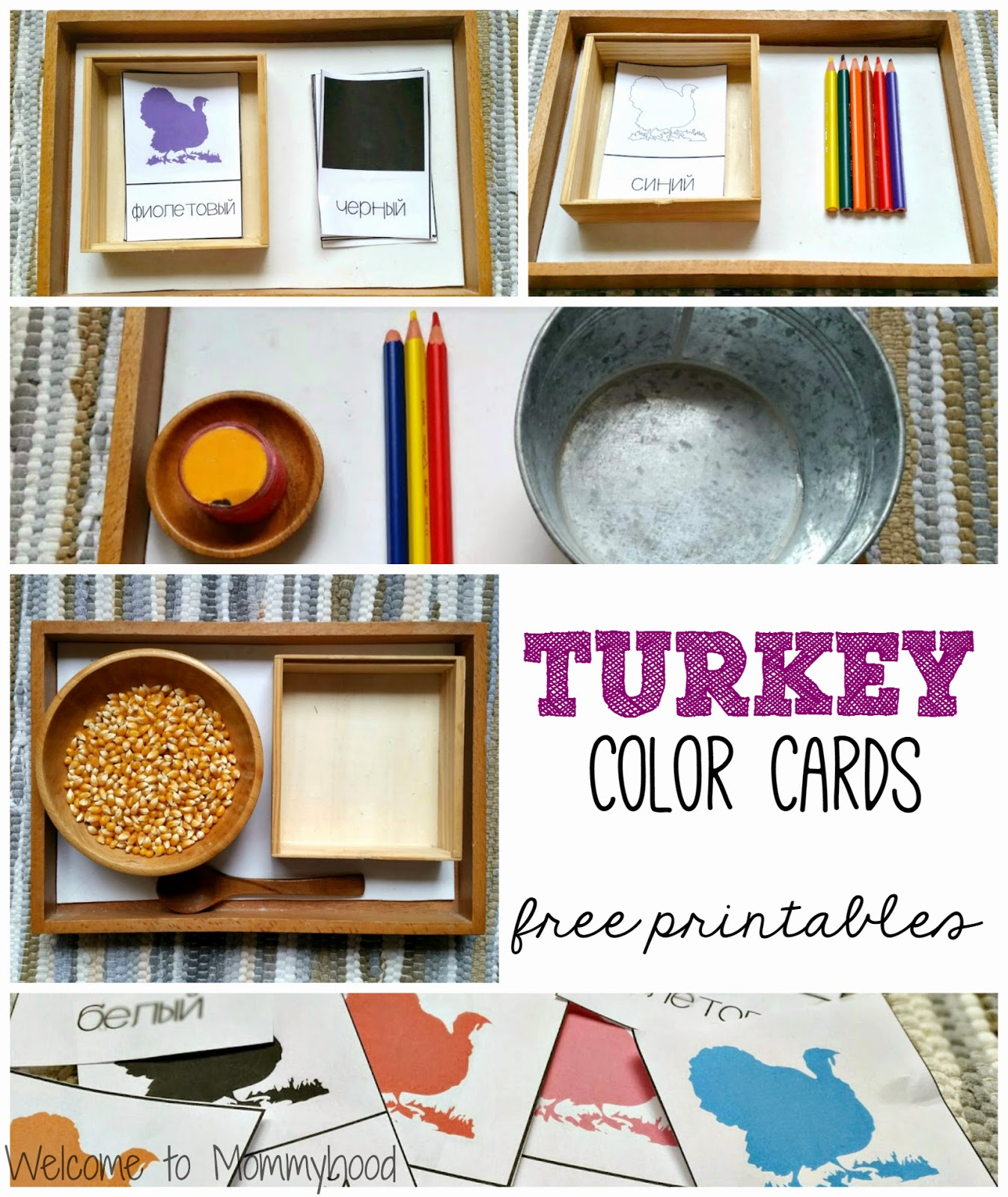 Color cards free - Thanksgiving Inspired Color Activities For Toddlers And Preschoolers Welcome To Mommyhood Coloractivitiesfortoddlers