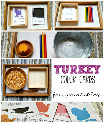Thanksgiving inspired color activities for toddlers and preschoolers {Welcome to Mommyhood} #coloractivitiesfortoddlers, #montessori, #montessoriinspired