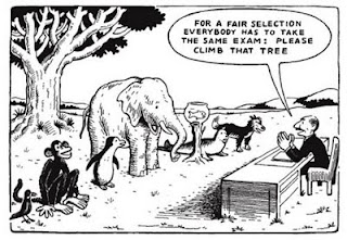 Animales van a trepar un árbol