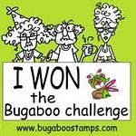 I WON THE DECEMBER 2012 BUGABOO CHALLENGE