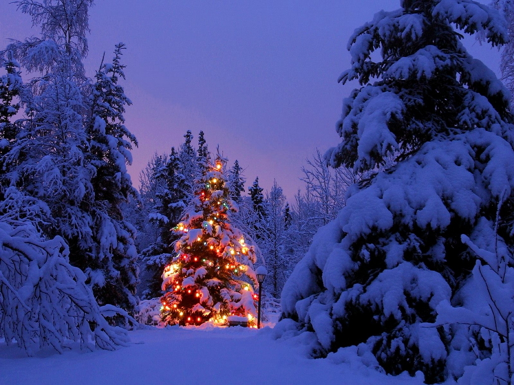 Free Snowy Christmas Scene Wallpapers Free Snowy Christmas Scene