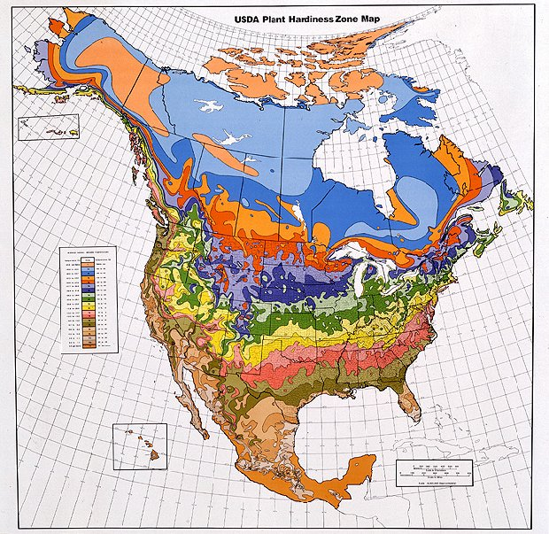 Temperate climate permaculture hardiness zones heat for Gardening zones ontario