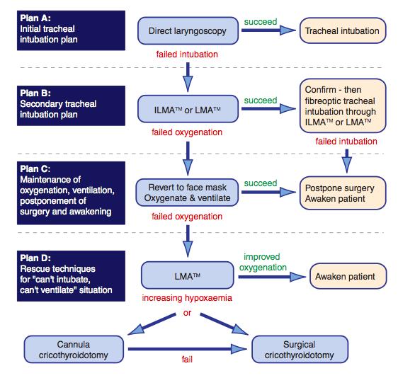 Algoritmos diagramas de flujo pseudocodigos clasificacion de contenido ccuart Gallery