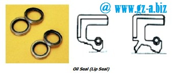 Radial Lip Seal (Oil Seal)
