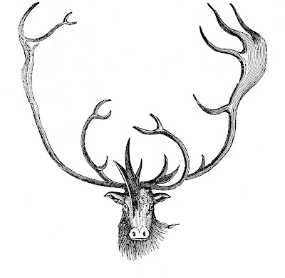 Vintage Animal Clip Art - Caribou