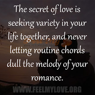 The secret of love is seeking variety