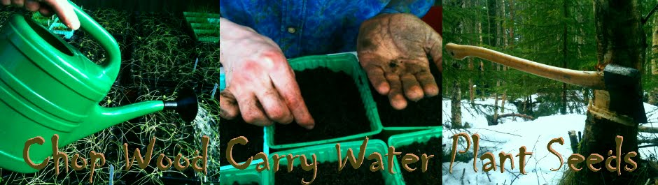 Chop Wood Carry Water Plant Seeds