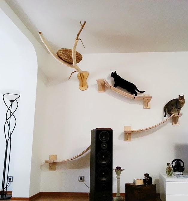 Dicas para gateiros: Prateleiras nível 'playground' para gatos-1.bp.blogspot.com
