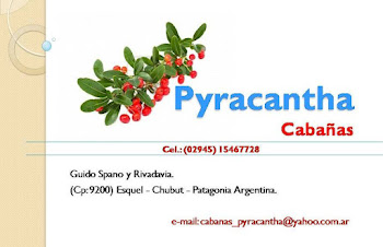 Cabaas Pyracantha