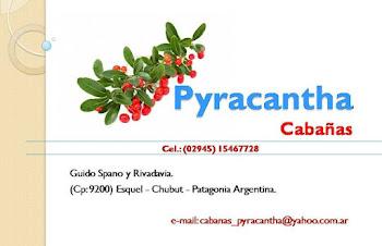 Cabañas Pyracantha