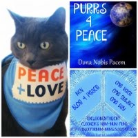 BLOG4PEACE 2015