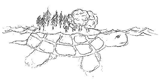 Waking Up On Turtle Island Native American Turtle Mythology