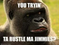 jimmies-ya-tryin-to-rustle-my-jimmies.jpg