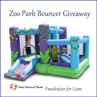 Zoo Park Bouncer with Ball Pit Giveaway