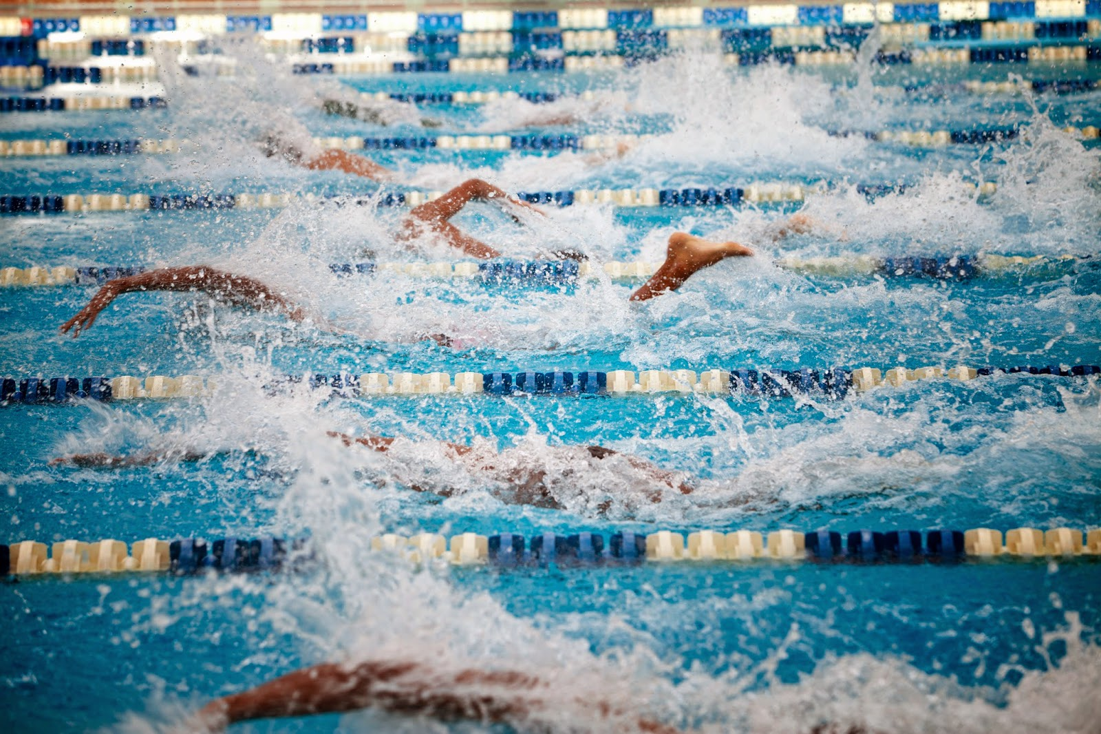Photo by: Getty Swimming Race