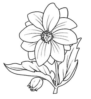 Dibujos De Flores Para Pintar En Tela Gratis - Dibujos para pintar en tela Manualidades facilisimo com