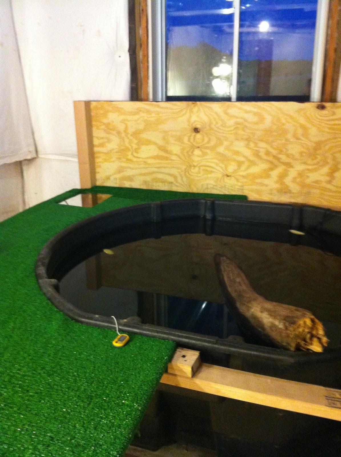 the headbanging harrier diy turtle resort