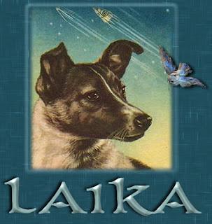 Laika I - [www.zootodays.blogspot.com]