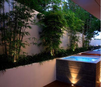 Fotos de jardin tipos de jardines para casas for Jardines hermosos para casas pequenas
