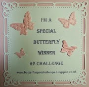 Butterfly Challenge Special Prize