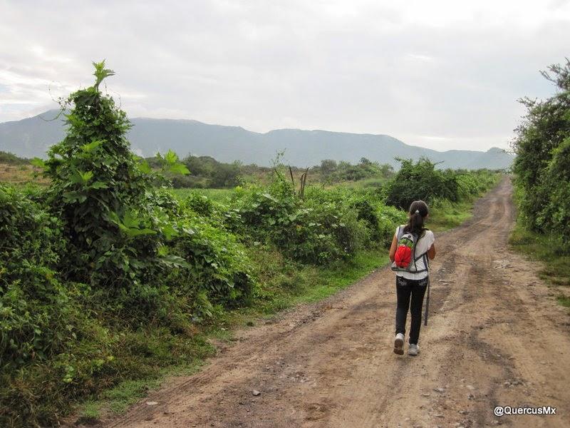 Caminando en la Brecha que va de Camichines a El Barro Cerro Huicicil al fondo