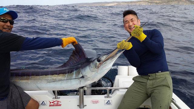 Pisces fleet sportfishing blog cabo san lucas fishing for Cabo san lucas fishing season