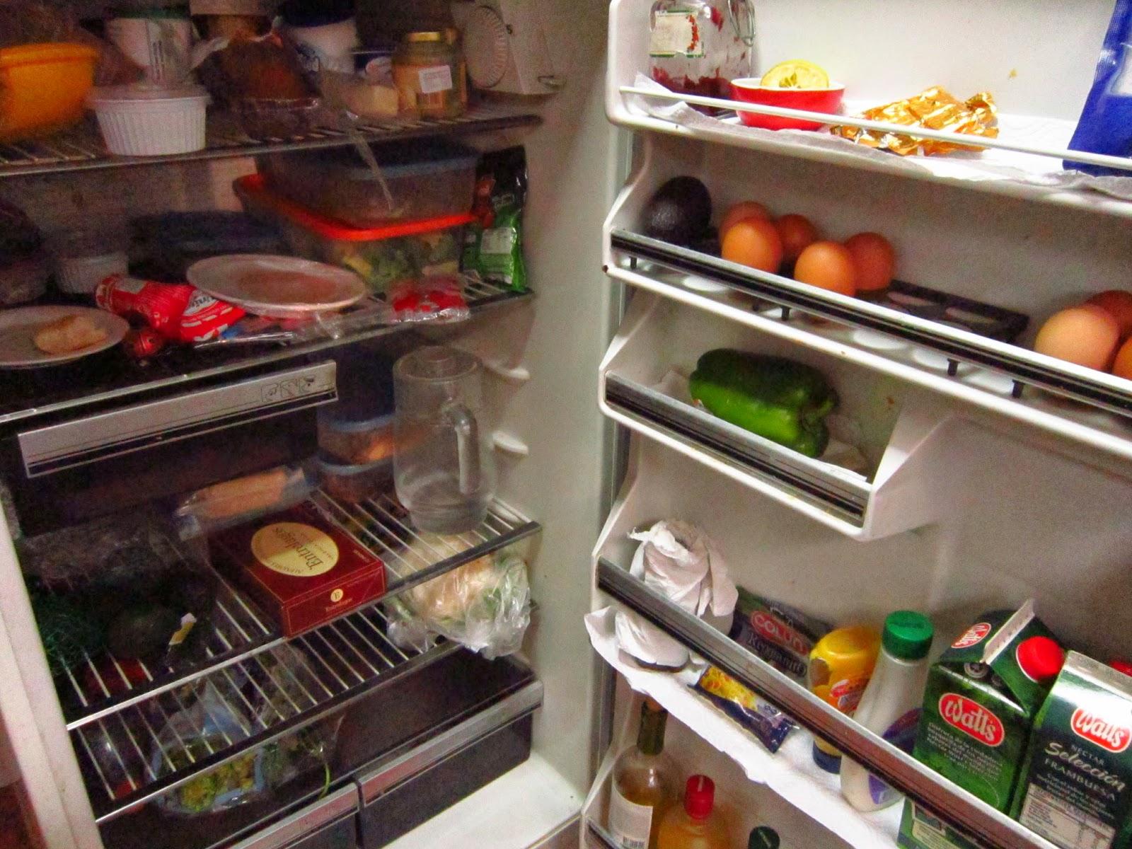 Análisis nutricional refrigerador Occidentalizado