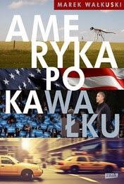 http://lubimyczytac.pl/ksiazka/237940/ameryka-po-kawalku