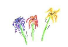 un petit bouquet de fleurs