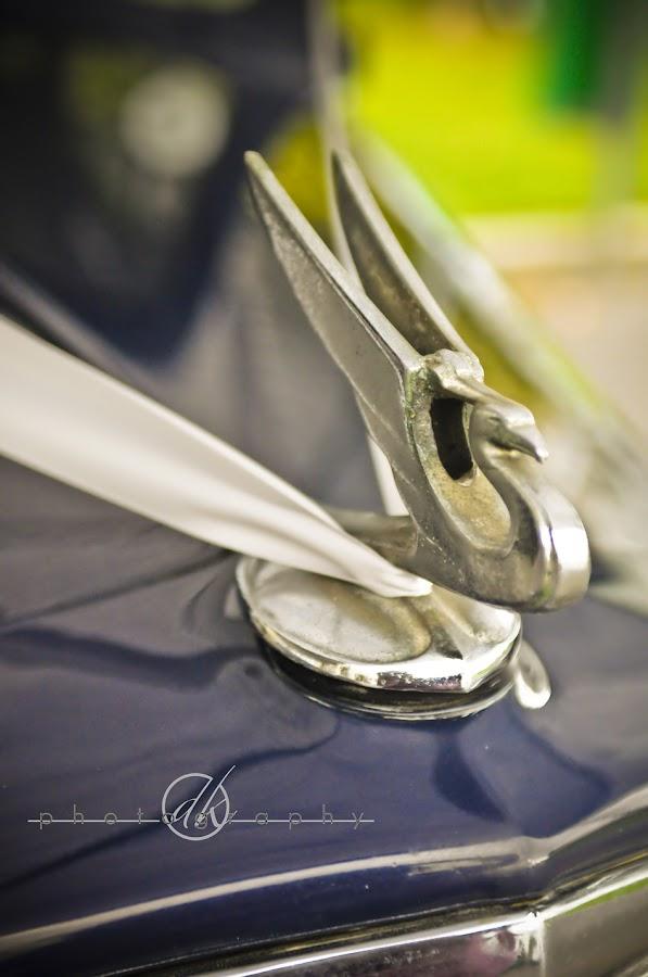 DK Photography No4 David & Nordely's DIY Wedding {Stellenbosch to Franschhoek}  Cape Town Wedding photographer