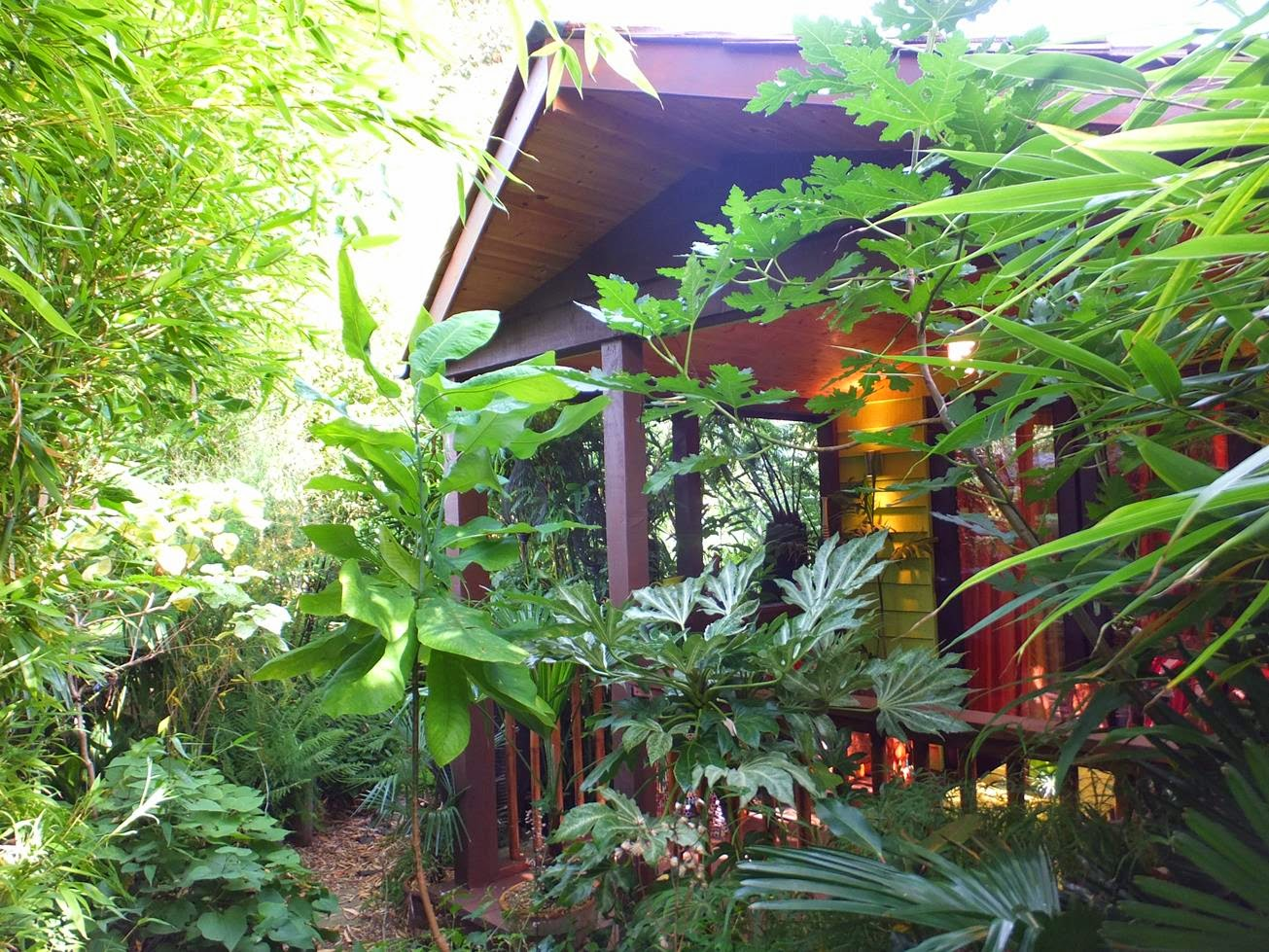 Jungle Hut at Alternative Eden