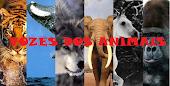 Vozes dos Animais