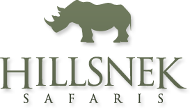 hillsneksafaris