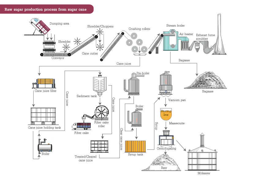 Process for sugar cane