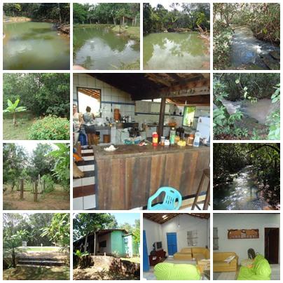 Chácara de Meio Alqueire Rica em água a 54 Km de Goiânia - em Bela Vista de Goiás