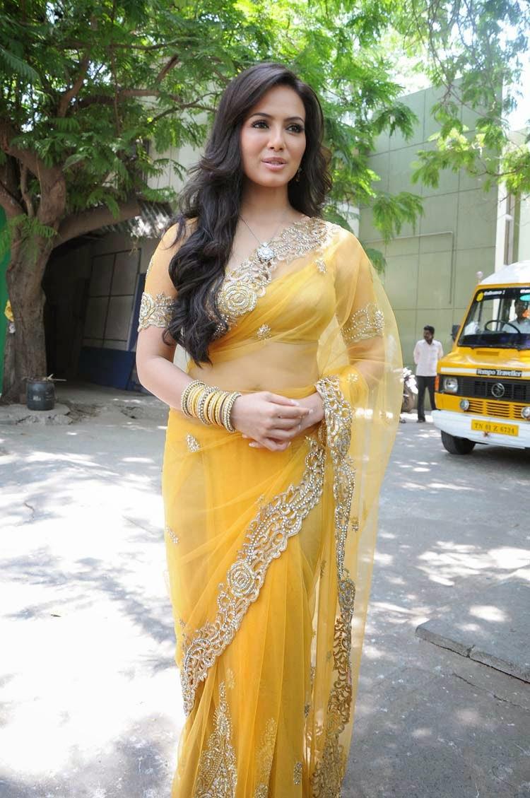 Sana Khan Hot Pics in Transparent Saree