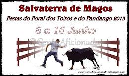 salvaterra de magos 2013