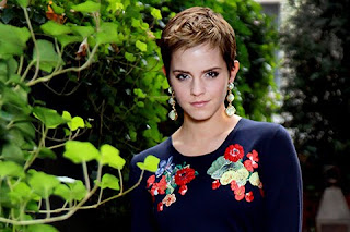 Hollywood Actress Emma Watson HD Cell phone wallpaper for all kind of brands and pixels
