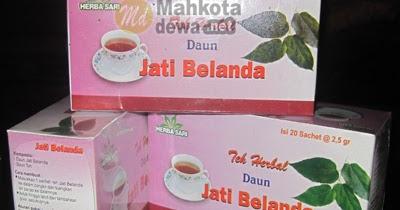 Teh Celup Daun Jati Belanda ~ Teh Herbal Pelangsing Alami ...