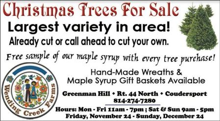 11-24 thru 12/24 Christmas Trees, Coudersport