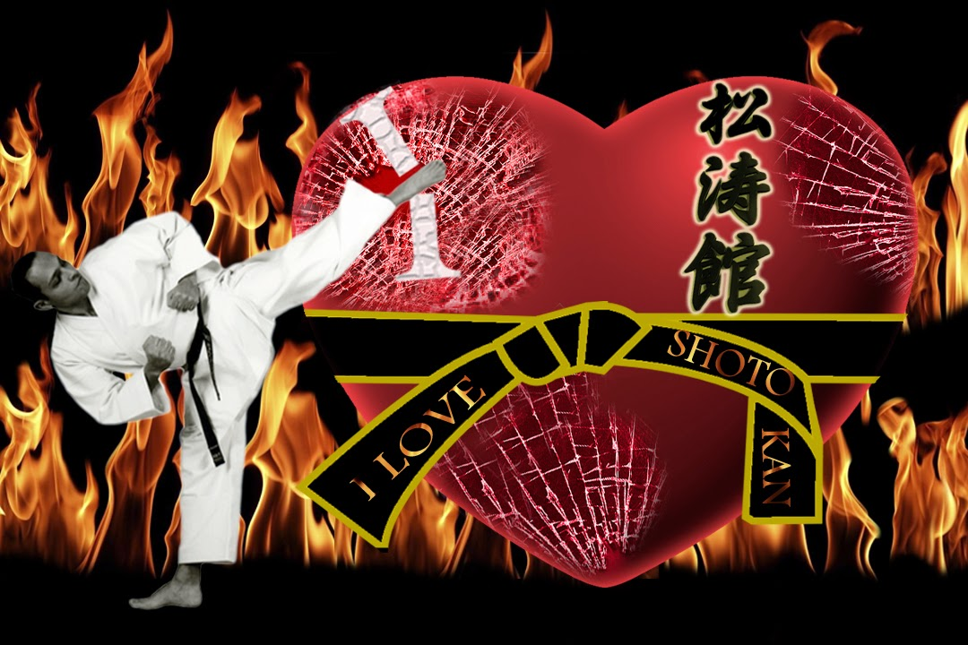 Kick Shotokan photoshop