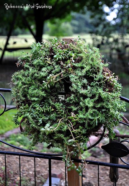 the garden-roof coop: Rebecca\'s Bird Gardens Post ~ DIY Living Wreath