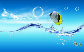 Creative And Cool 3D Waterlife Wallpapers For PC