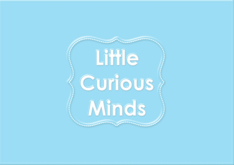 Little Curious Minds