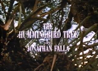 Дерево колибри / The Hummingbird Tree.