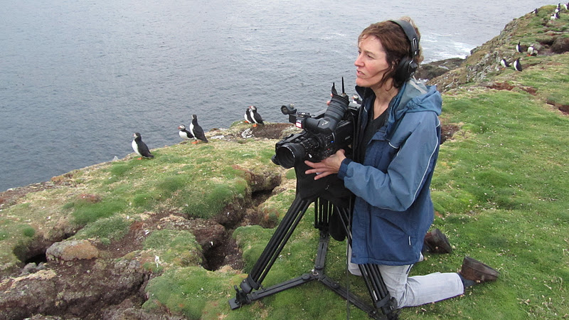 Fair Isle: Henry & the Puffins - Fair Isle Video by Liz Musser for ...