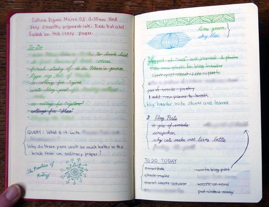 distinctively visual essay intro